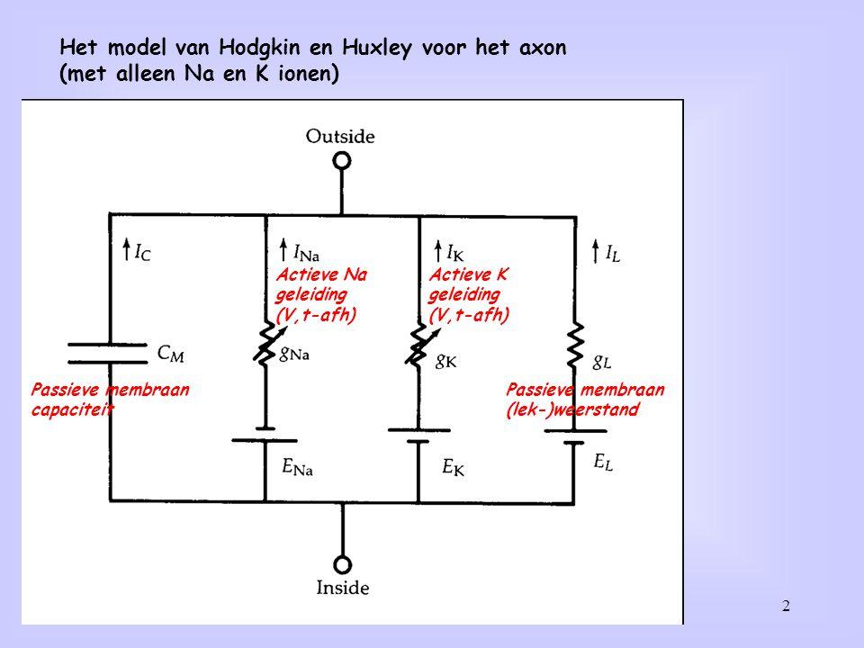 Het model van Hodgkin en Huxley voor het axon