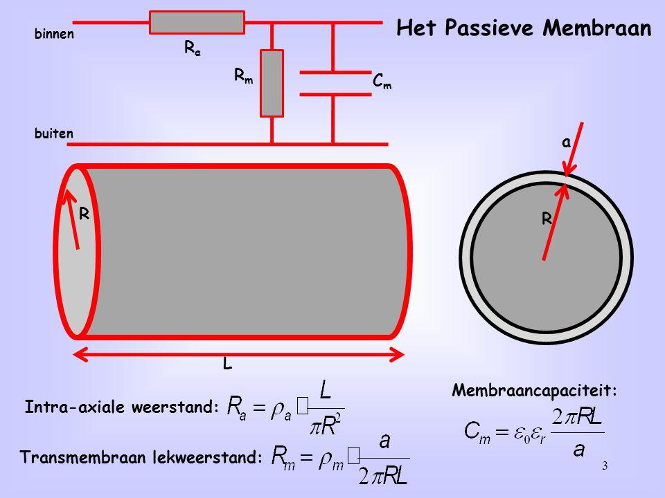 Intra-axiale weerstand: Transmembraan lekweerstand: