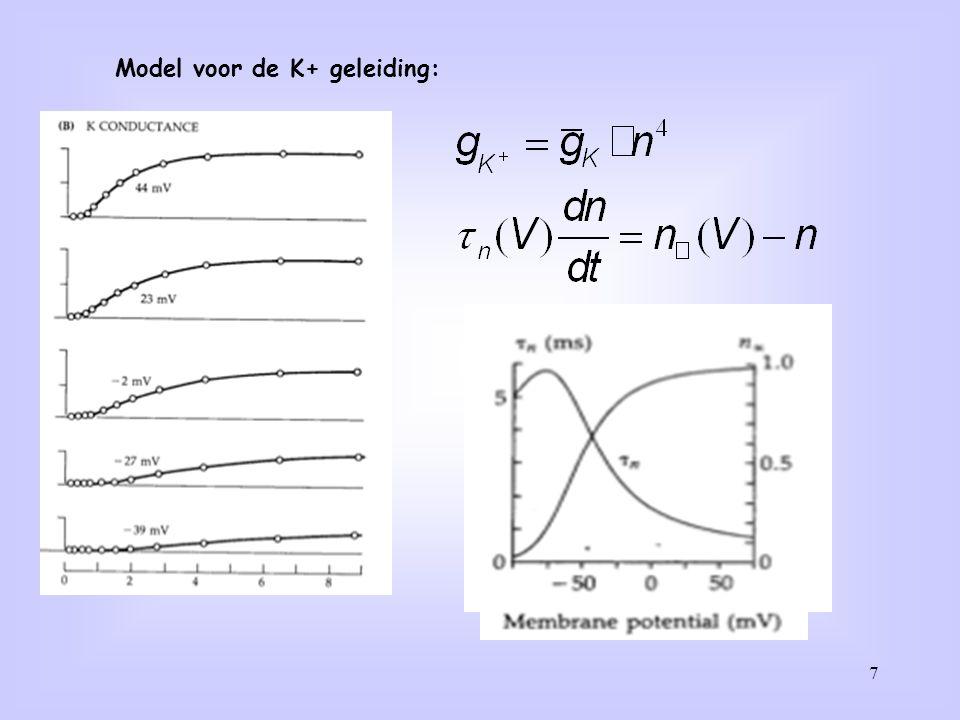 Model voor de K+ geleiding: