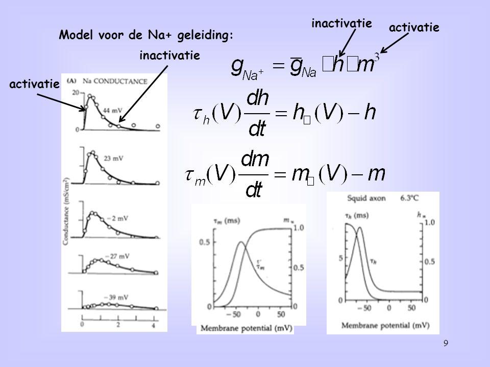 Model voor de Na+ geleiding: