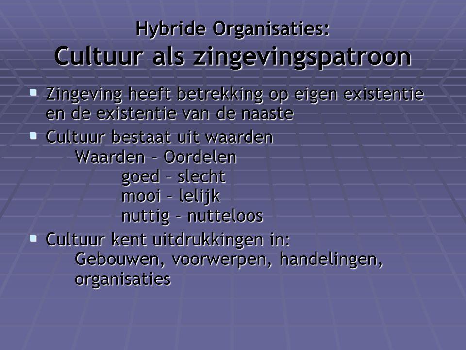 Hybride Organisaties: Cultuur als zingevingspatroon
