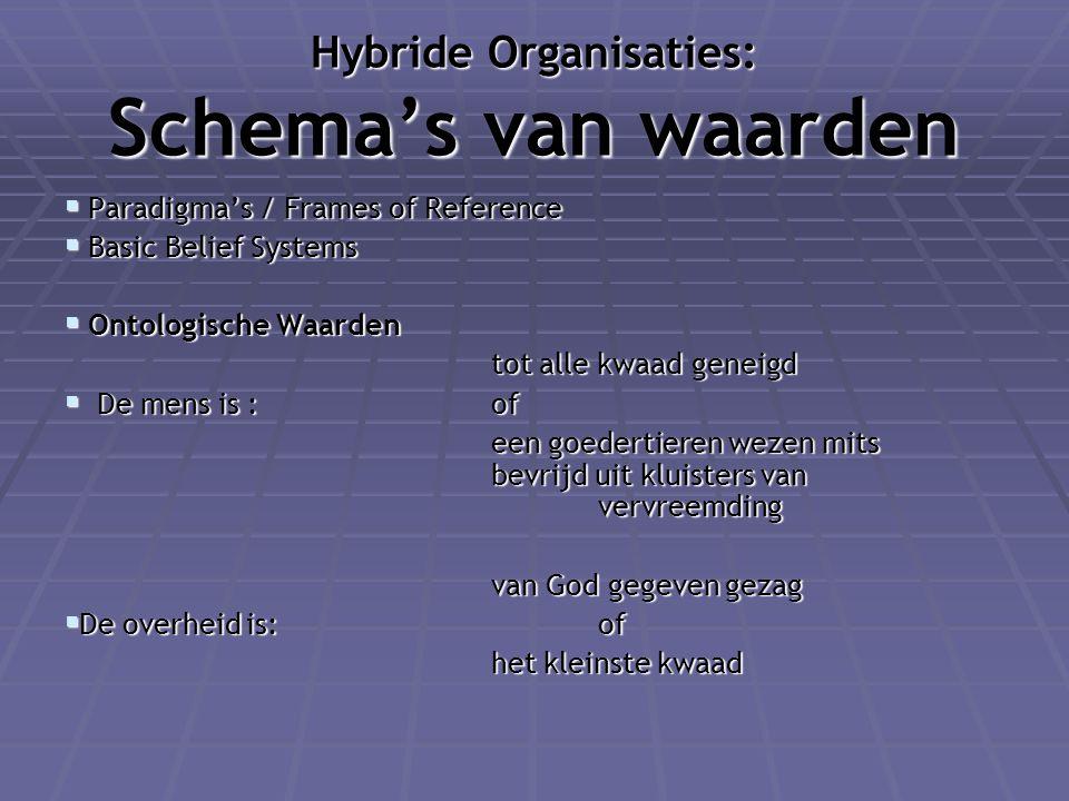 Hybride Organisaties: Schema's van waarden