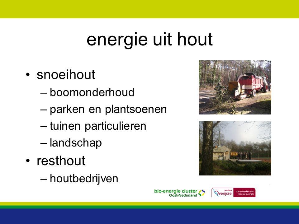 energie uit hout snoeihout resthout boomonderhoud