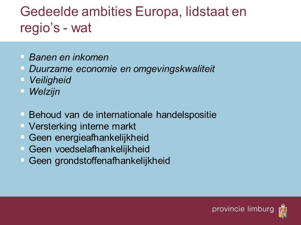 Gedeelde ambities Europa, lidstaat en regio's - wat