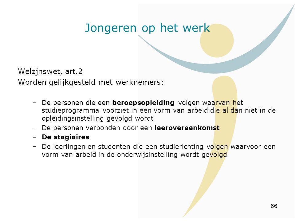 Jongeren op het werk Welzjnswet, art.2