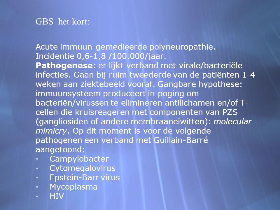 GBS het kort:
