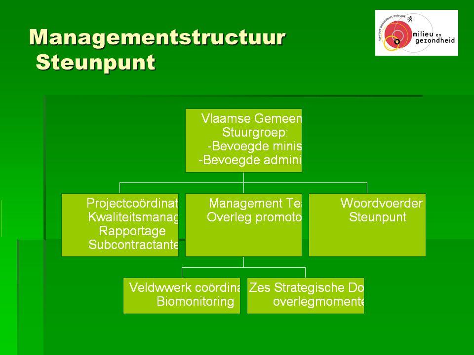 Managementstructuur Steunpunt