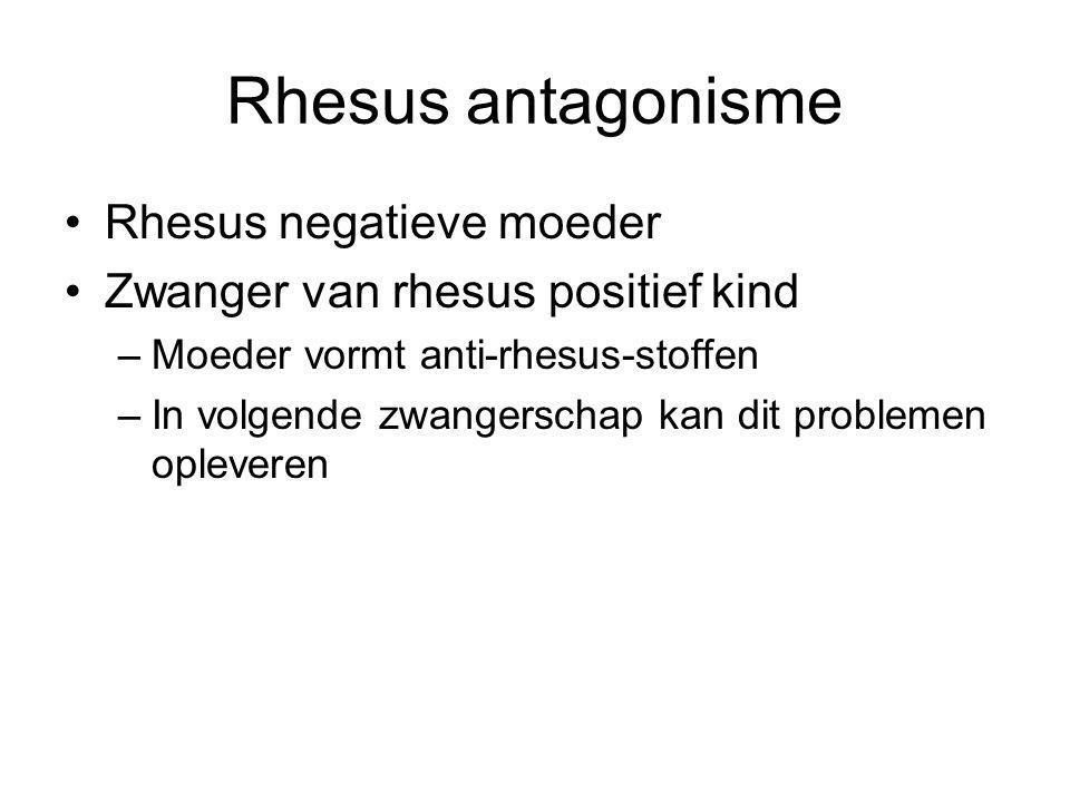 Rhesus antagonisme Rhesus negatieve moeder