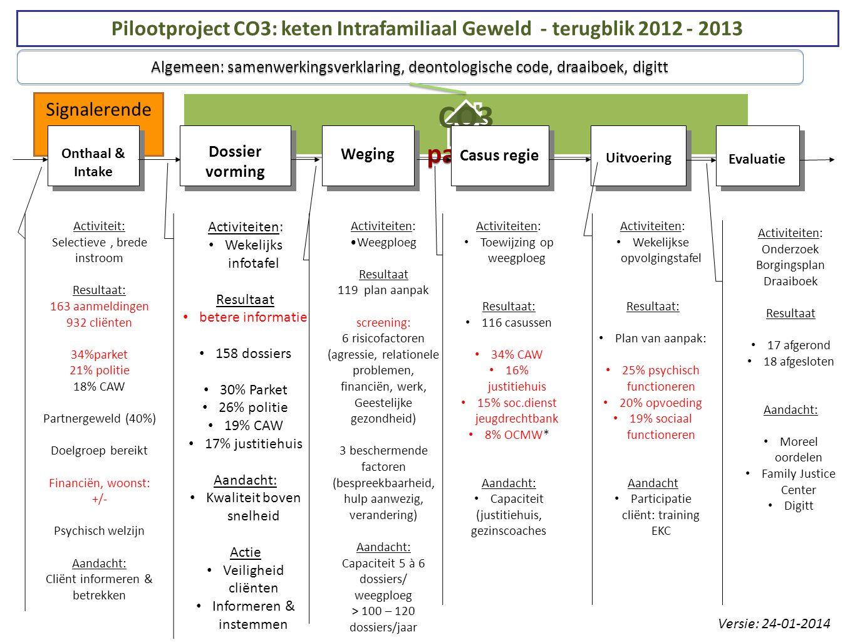 Pilootproject CO3: keten Intrafamiliaal Geweld - terugblik 2012 - 2013
