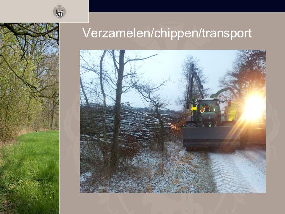Verzamelen/chippen/transport