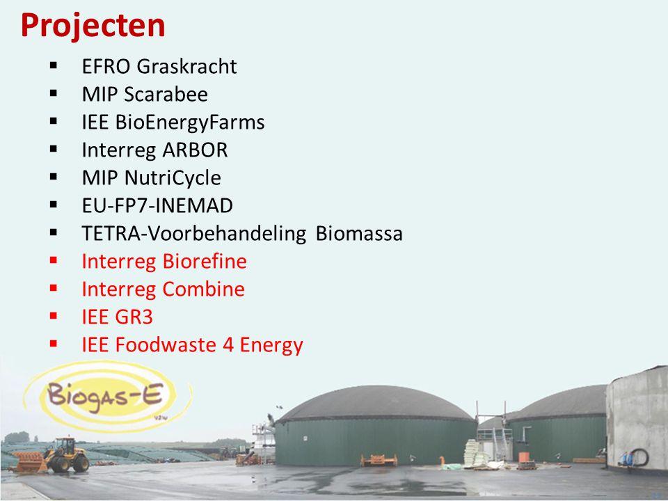 Projecten EFRO Graskracht MIP Scarabee IEE BioEnergyFarms