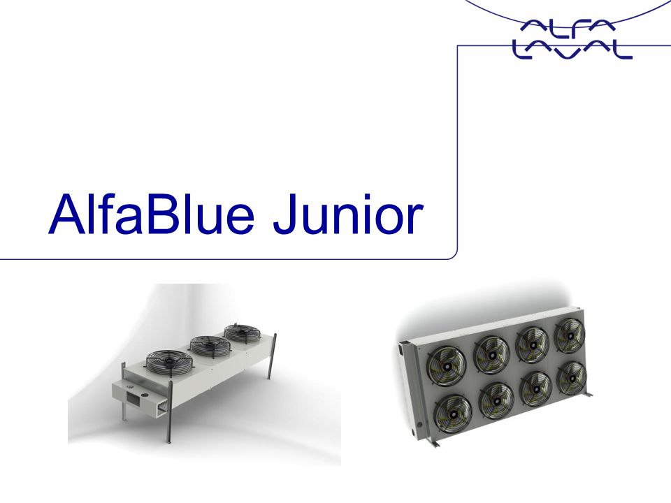 AlfaBlue Junior