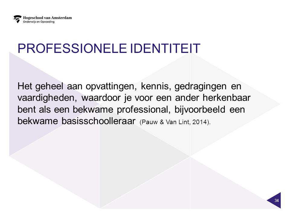 Professionele identiteit