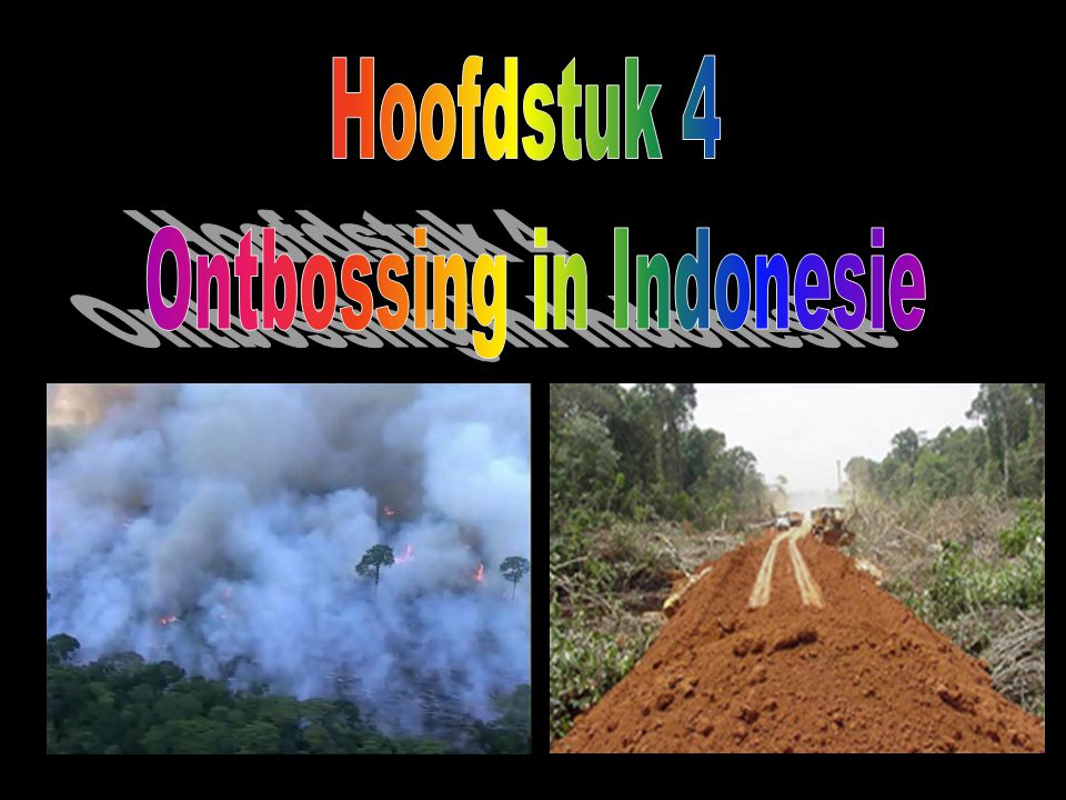 Ontbossing in Indonesie