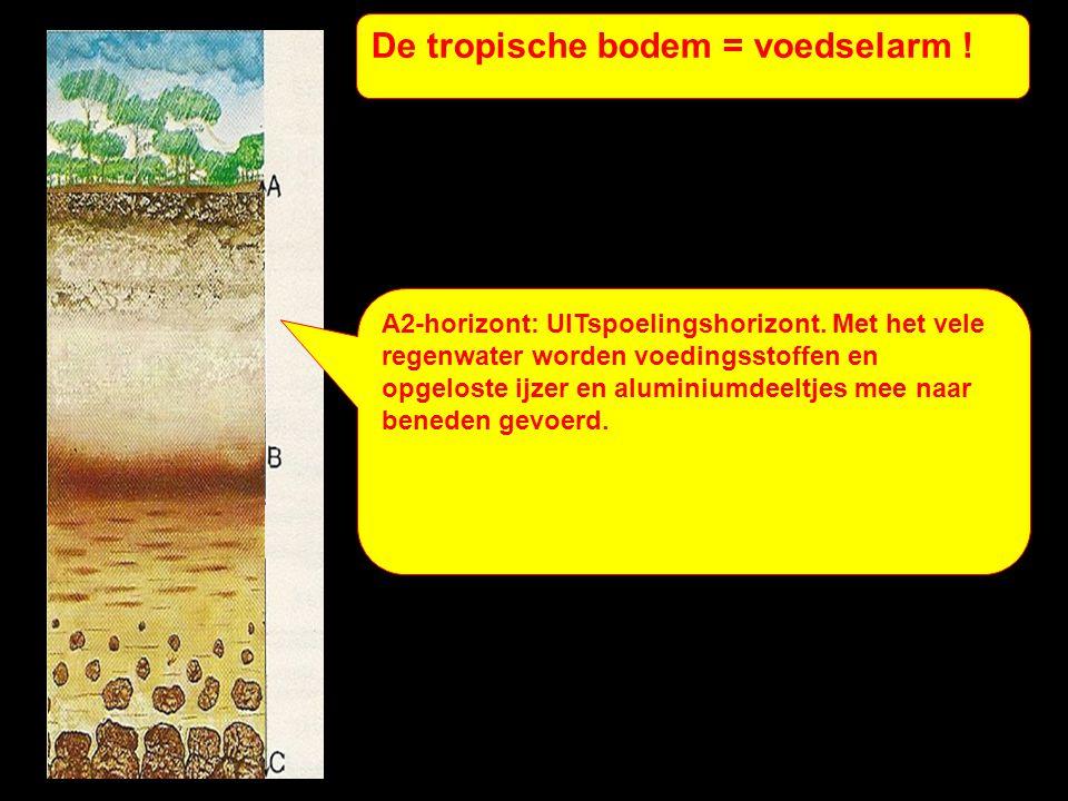 De tropische bodem = voedselarm !