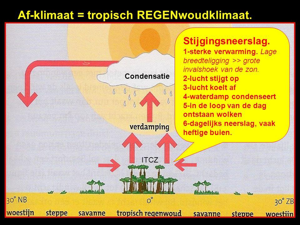 Af-klimaat = tropisch REGENwoudklimaat.
