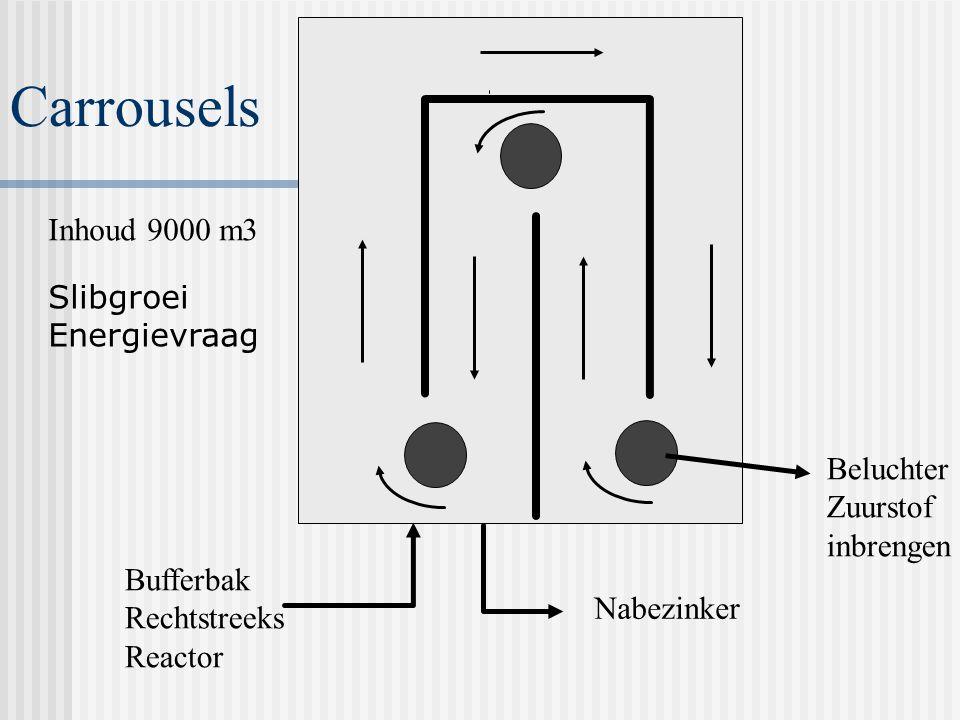 Carrousels Inhoud 9000 m3 Slibgroei Energievraag Beluchter Zuurstof
