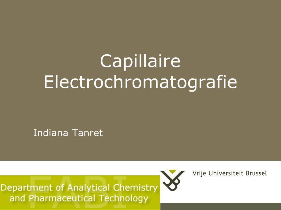 Capillaire Electrochromatografie