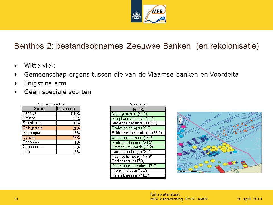 Benthos 2: bestandsopnames Zeeuwse Banken (en rekolonisatie)
