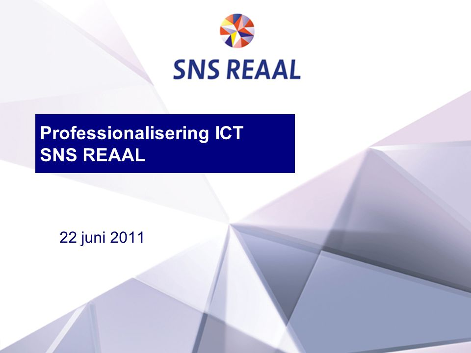 Professionalisering ICT SNS REAAL