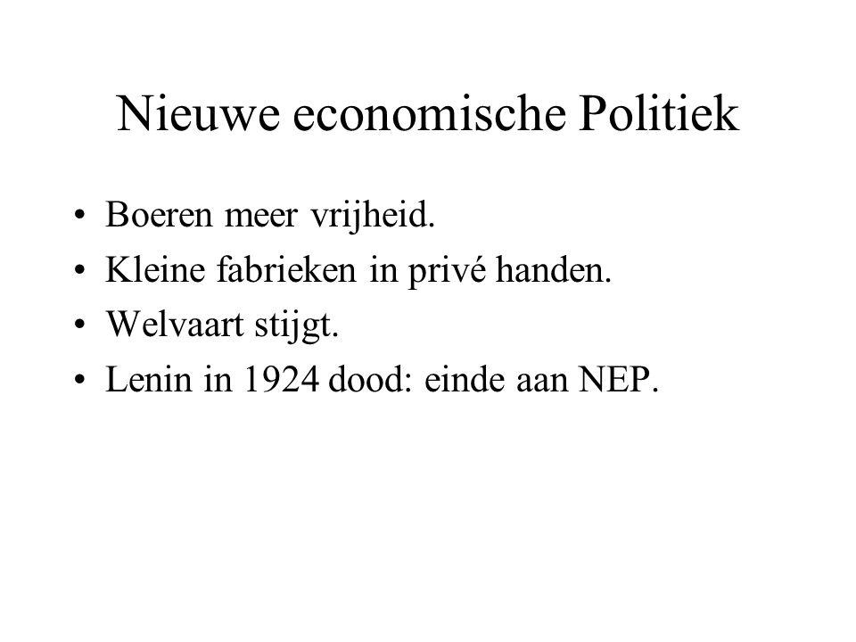 Nieuwe economische Politiek
