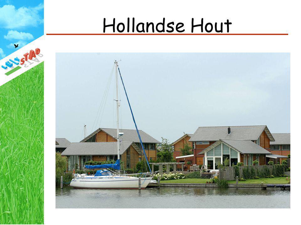 Hollandse Hout Start bouw vanaf eind jaren 90, 280 woningen