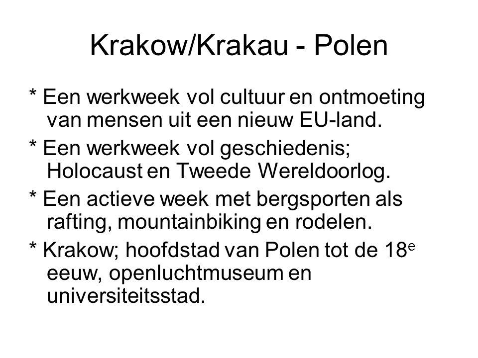 Krakow/Krakau - Polen * Een werkweek vol cultuur en ontmoeting van mensen uit een nieuw EU-land.