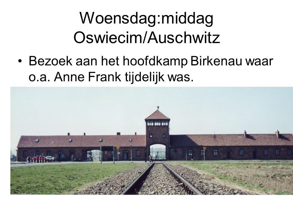 Woensdag:middag Oswiecim/Auschwitz
