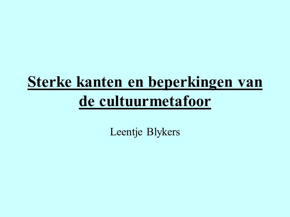 Sterke kanten en beperkingen van de cultuurmetafoor