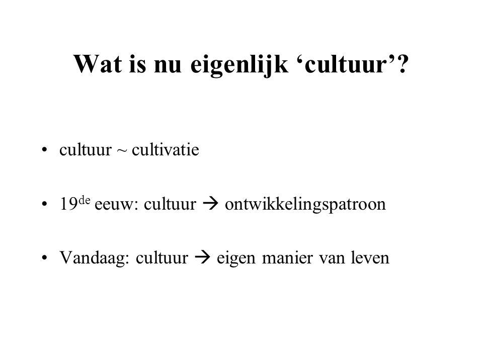 Wat is nu eigenlijk 'cultuur'