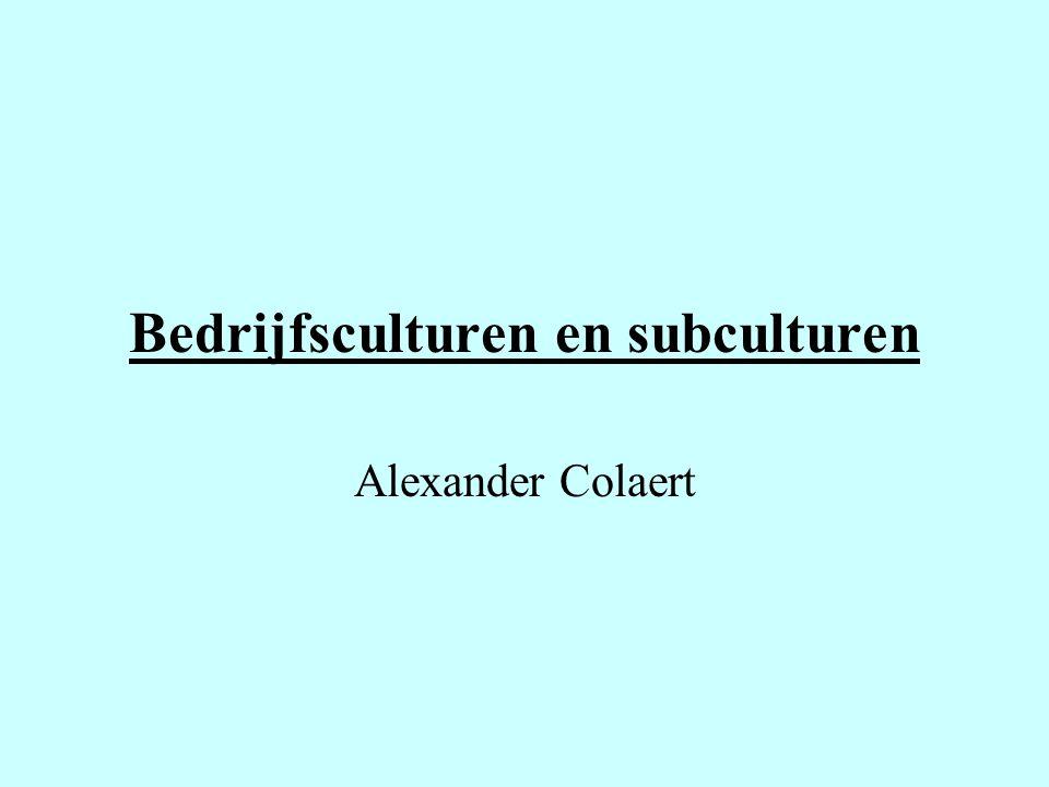Bedrijfsculturen en subculturen