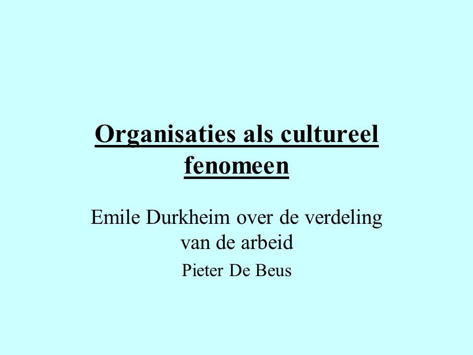 Organisaties als cultureel fenomeen