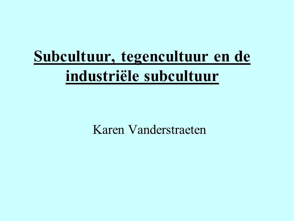 Subcultuur, tegencultuur en de industriële subcultuur