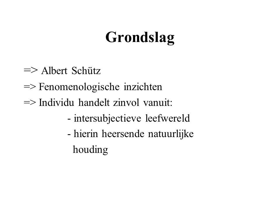 Grondslag => Albert Schütz => Fenomenologische inzichten