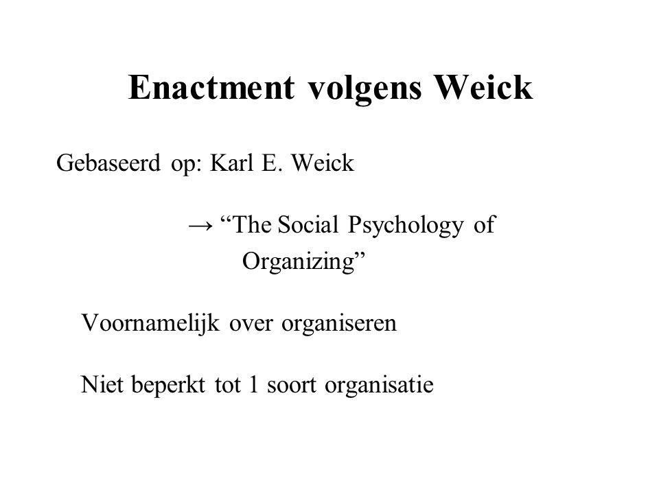 Enactment volgens Weick