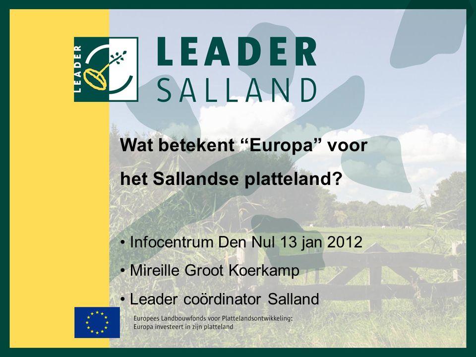 Wat betekent Europa voor het Sallandse platteland