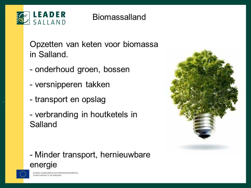 Opzetten van keten voor biomassa in Salland. onderhoud groen, bossen