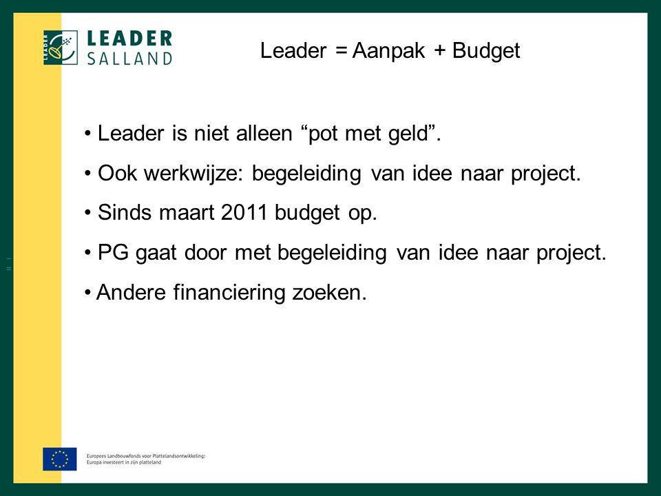 Leader = Aanpak + Budget