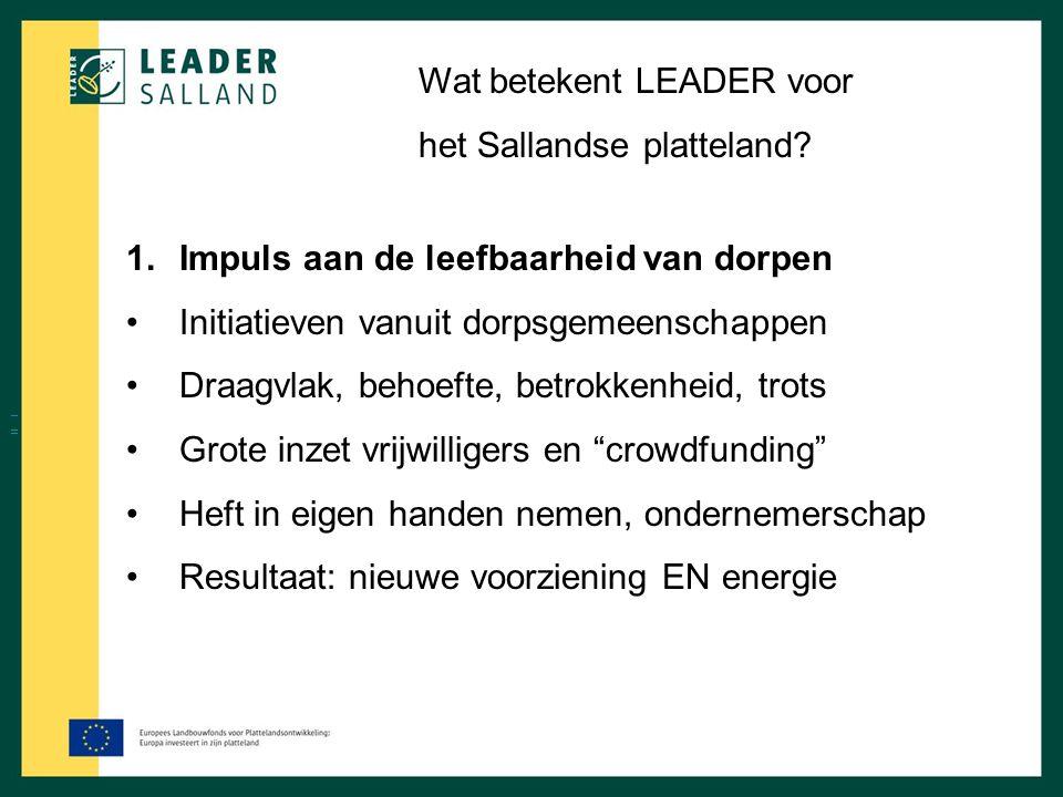 Wat betekent LEADER voor het Sallandse platteland