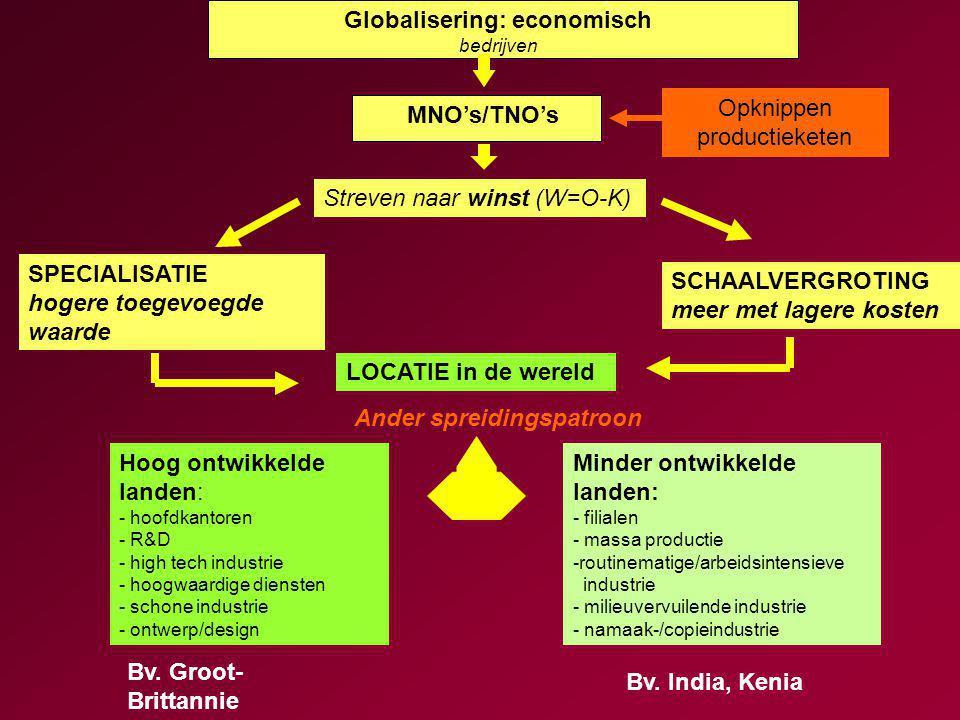 Globalisering: economisch bedrijven