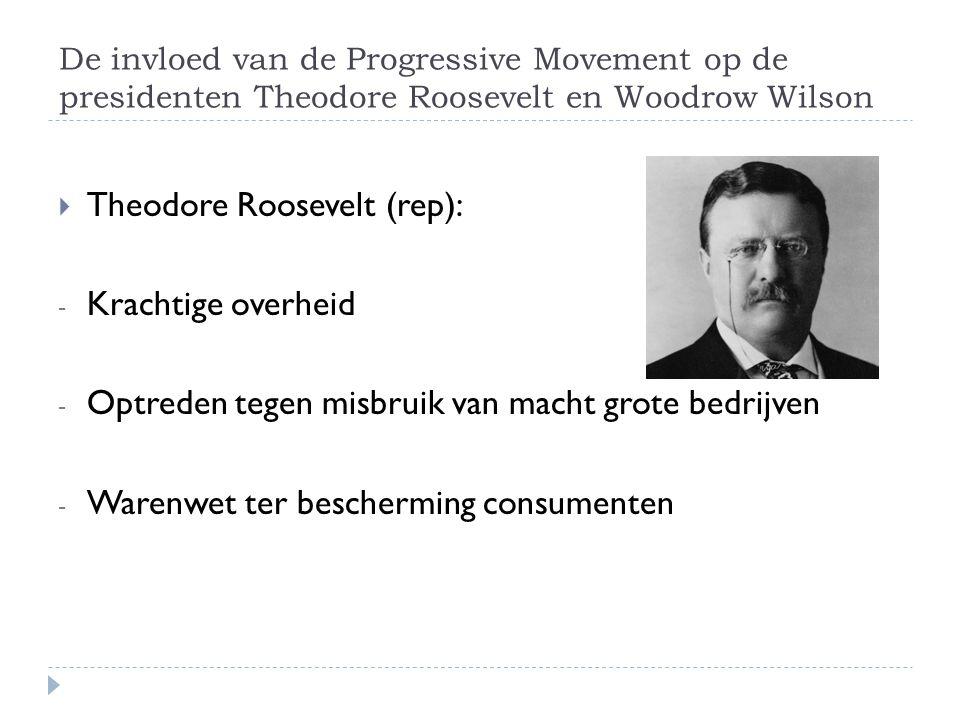 Theodore Roosevelt (rep): Krachtige overheid