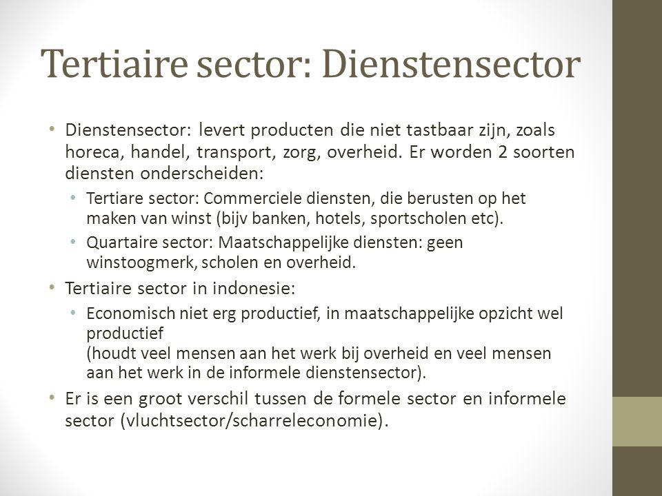 Tertiaire sector: Dienstensector