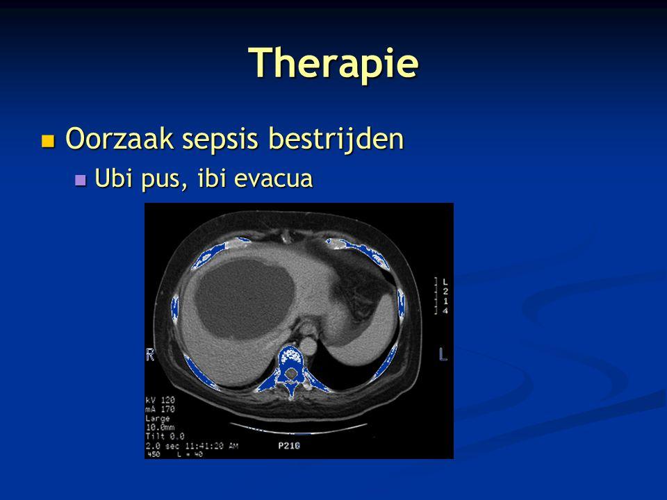 Therapie Oorzaak sepsis bestrijden Ubi pus, ibi evacua