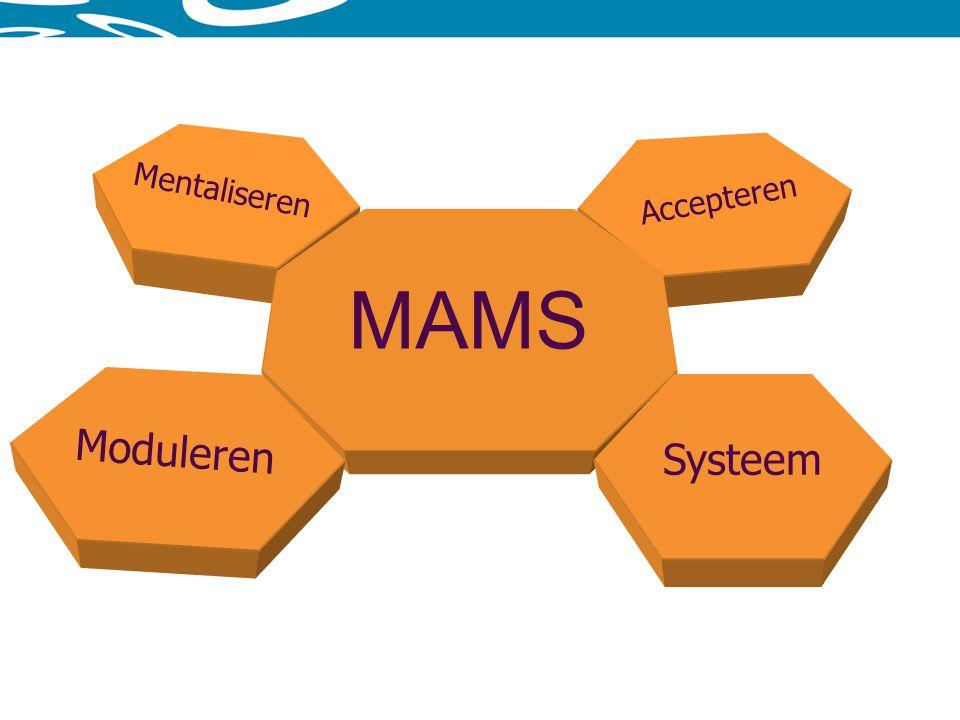 Mentaliseren Accepteren MAMS Moduleren Systeem