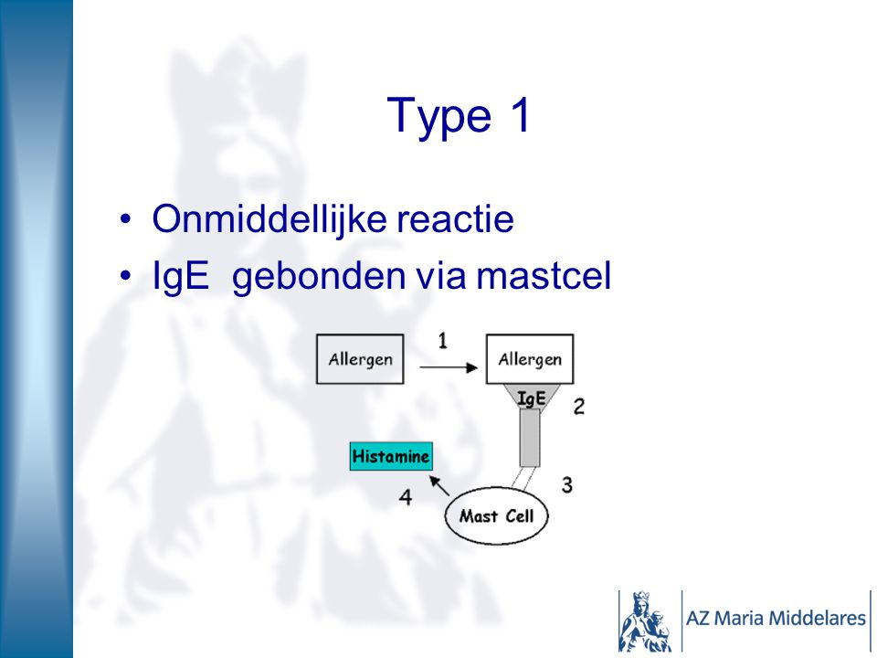 Type 1 Onmiddellijke reactie IgE gebonden via mastcel