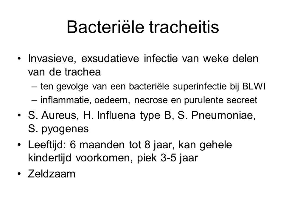Bacteriële tracheitis