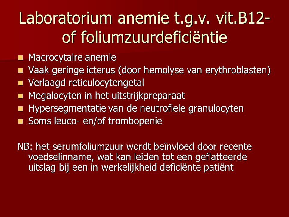 Laboratorium anemie t.g.v. vit.B12- of foliumzuurdeficiëntie