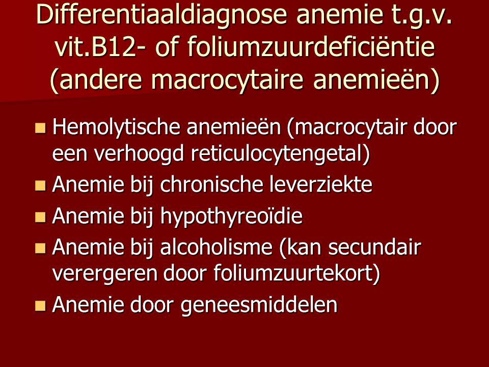 Differentiaaldiagnose anemie t. g. v. vit