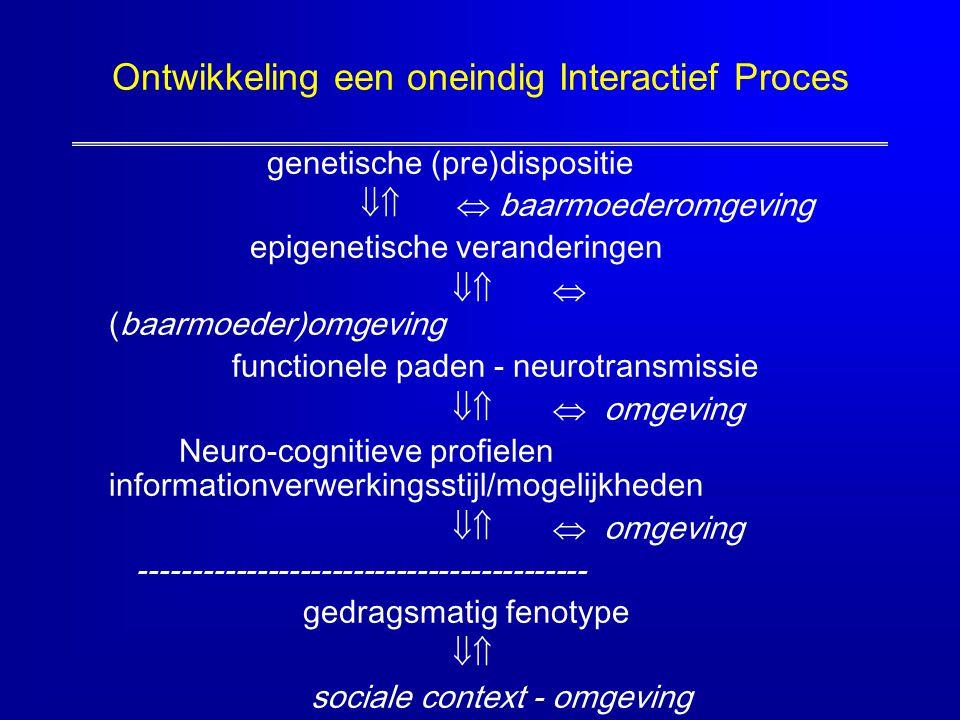 Ontwikkeling een oneindig Interactief Proces