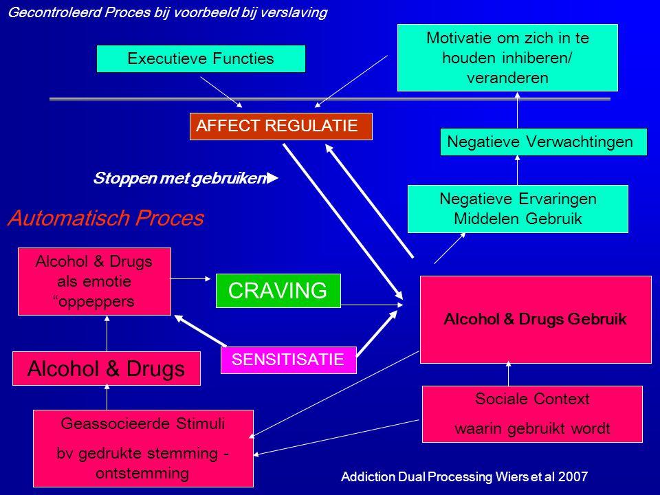 Alcohol & Drugs Gebruik